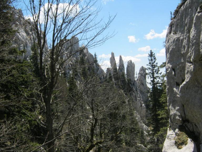Prsti u Bijelim stijenama