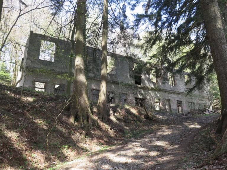 Brestovac zarobljen u šumi